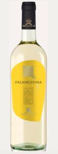 falanghina-puglia-igp-vino-bianco-rivendita-vino-bianco-torino-cosmodrink
