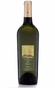 fiano-campania-igt-vino-bianco-magazzino-bibite-vini-torino-cosmodrink